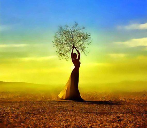 femme-arbre-lumiere